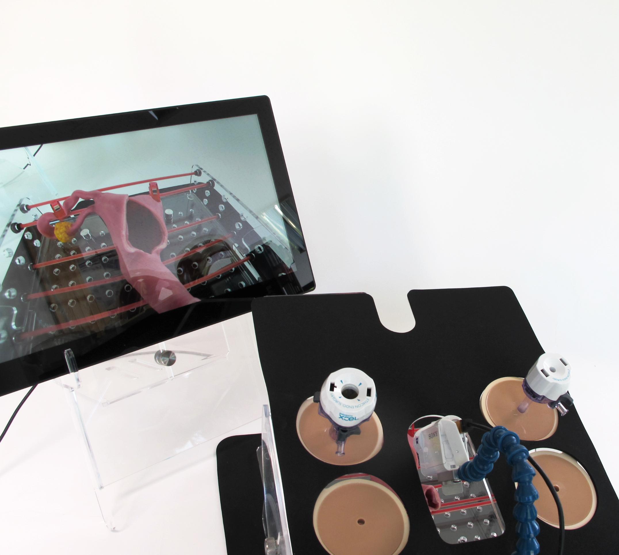 Portable Laparoscopic Trainer07