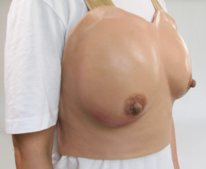 Breast Anatomy Lactation Model02