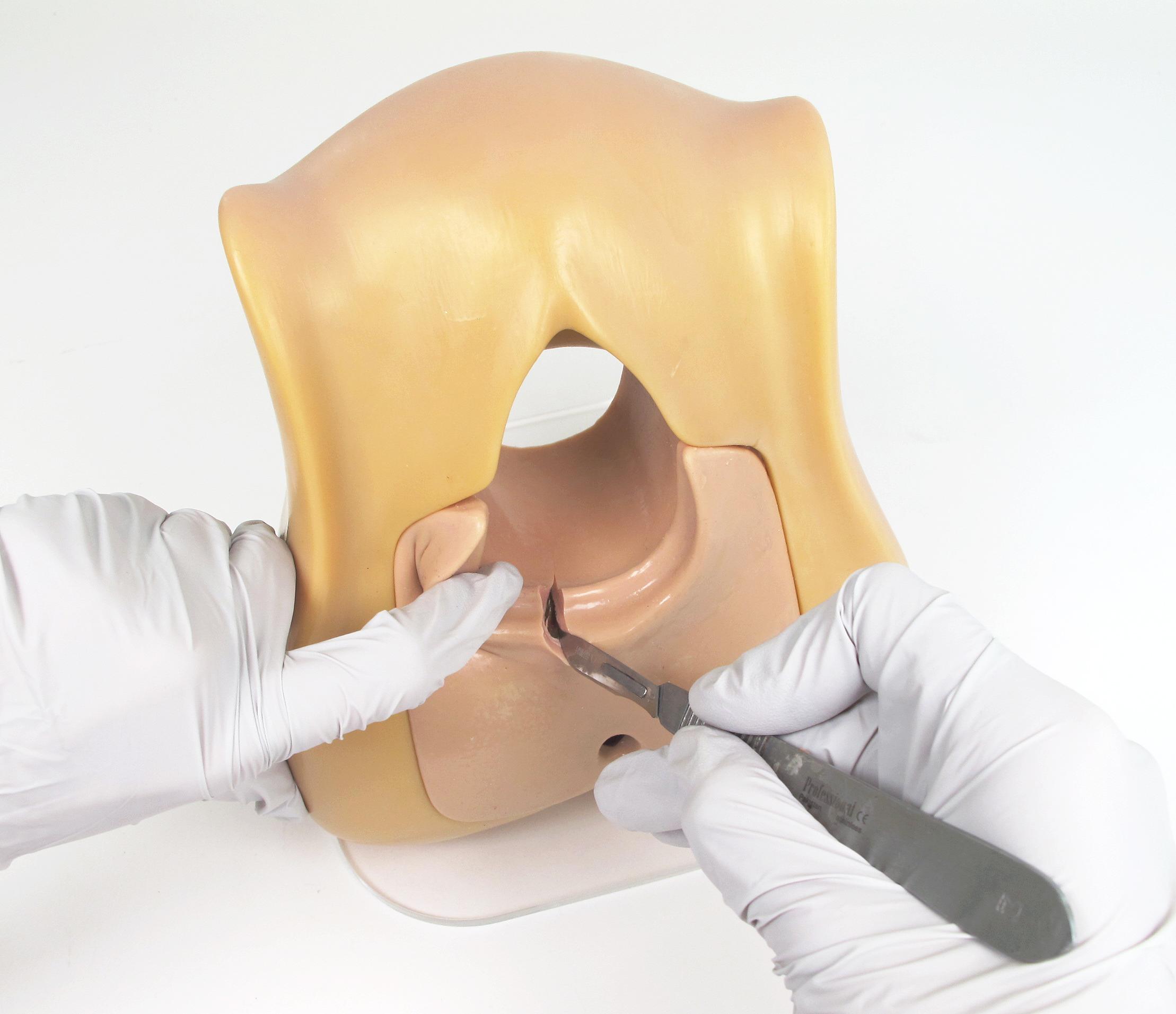 Episiotomy Trainer05